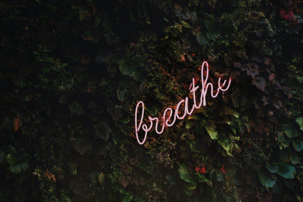 Achtsamkeit, Selbsterkenntnis, Einsamkeit, Angst, CBD, Meditation, Fokus, Konzentration, Ruhe, Cannabidiol. Einsam sein müssen, ist schwer. Achtsam sein können, ist die hohe Kunst, die uns am Ende mit mehr Leichtigkeit durchs Leben führt.