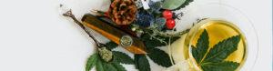 Wohltuenden CBD Hanftee aus CBD Bio-Blüten selber zubereiten